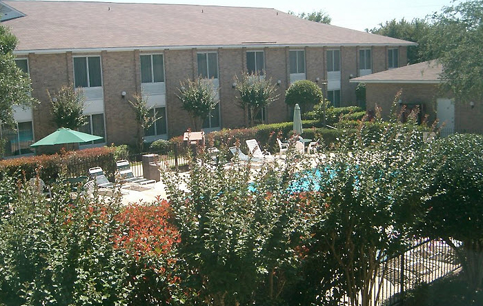 Hotel exterior swimming pool over hedges