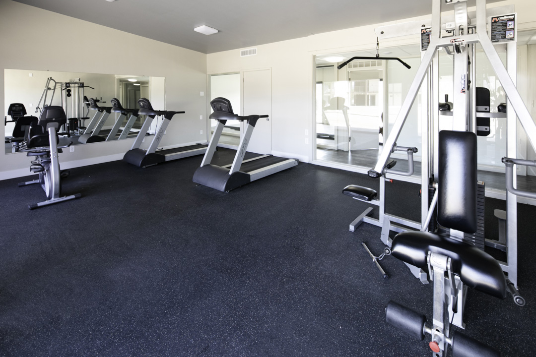 Fitness Facility with Treadmill, Weights, and Cycle