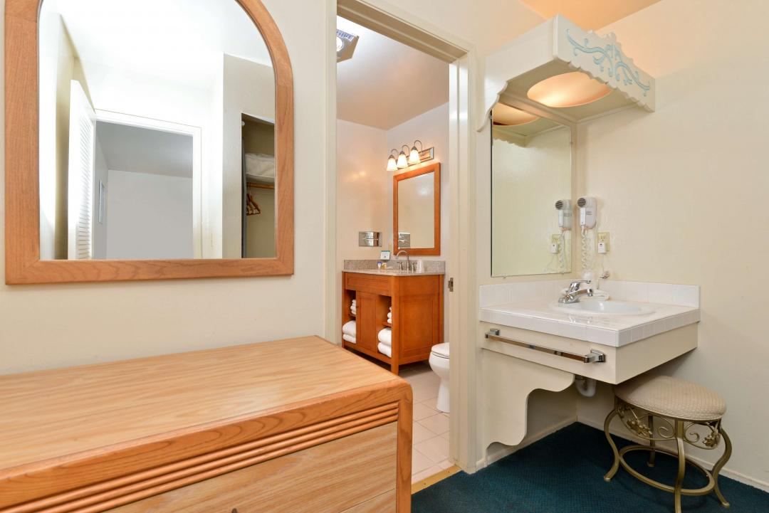 Spacious Deluxe Guest Bathroom with Vanity and Powder Vanity.