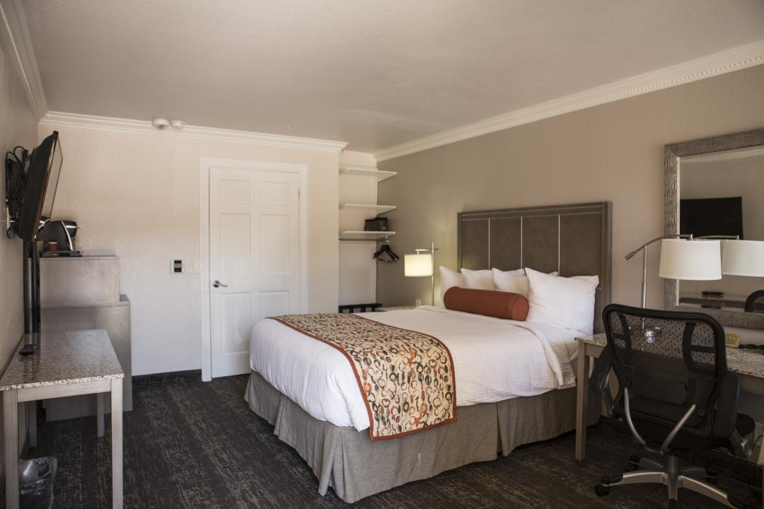 1 Queen Guest Room, ADA