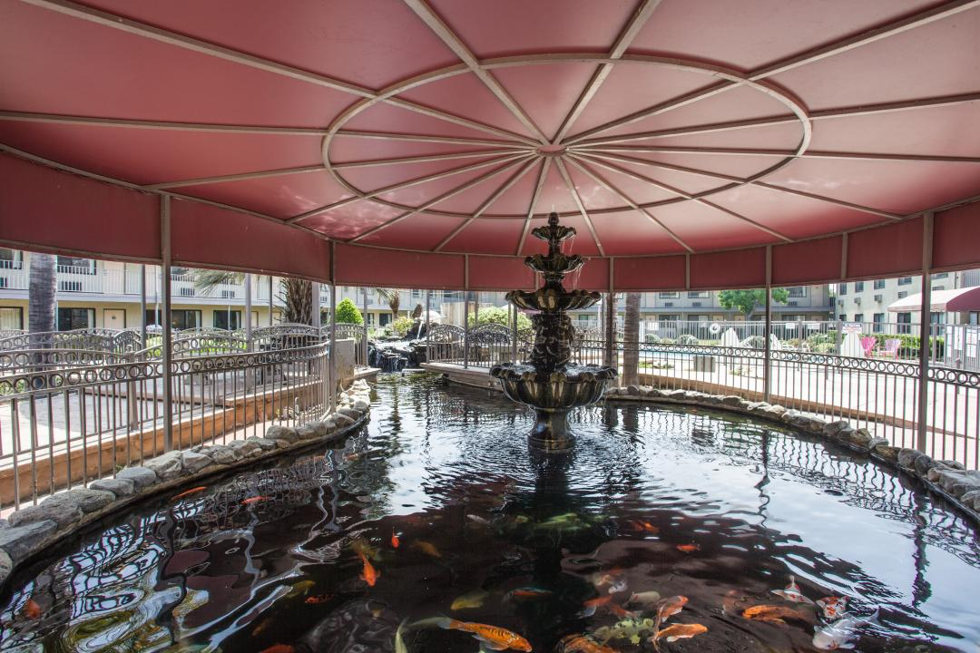 Outdoor covered fountain with koi fish in water