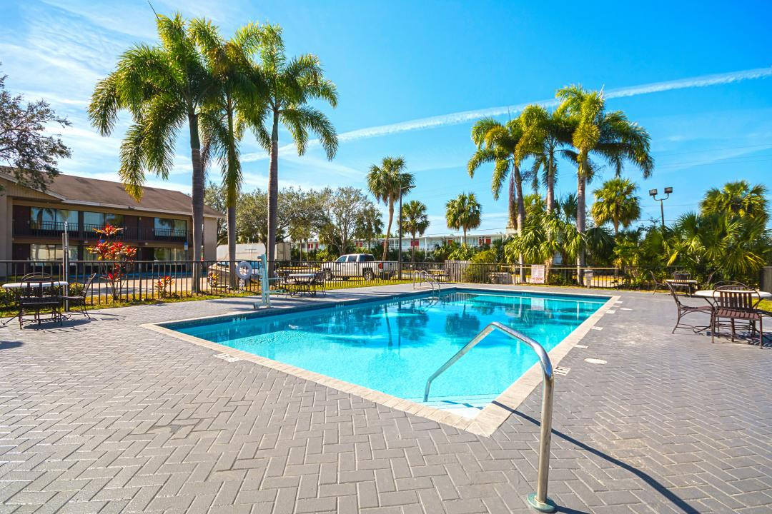 Pretty outdoor pool area with palm trees and nearby parking lot
