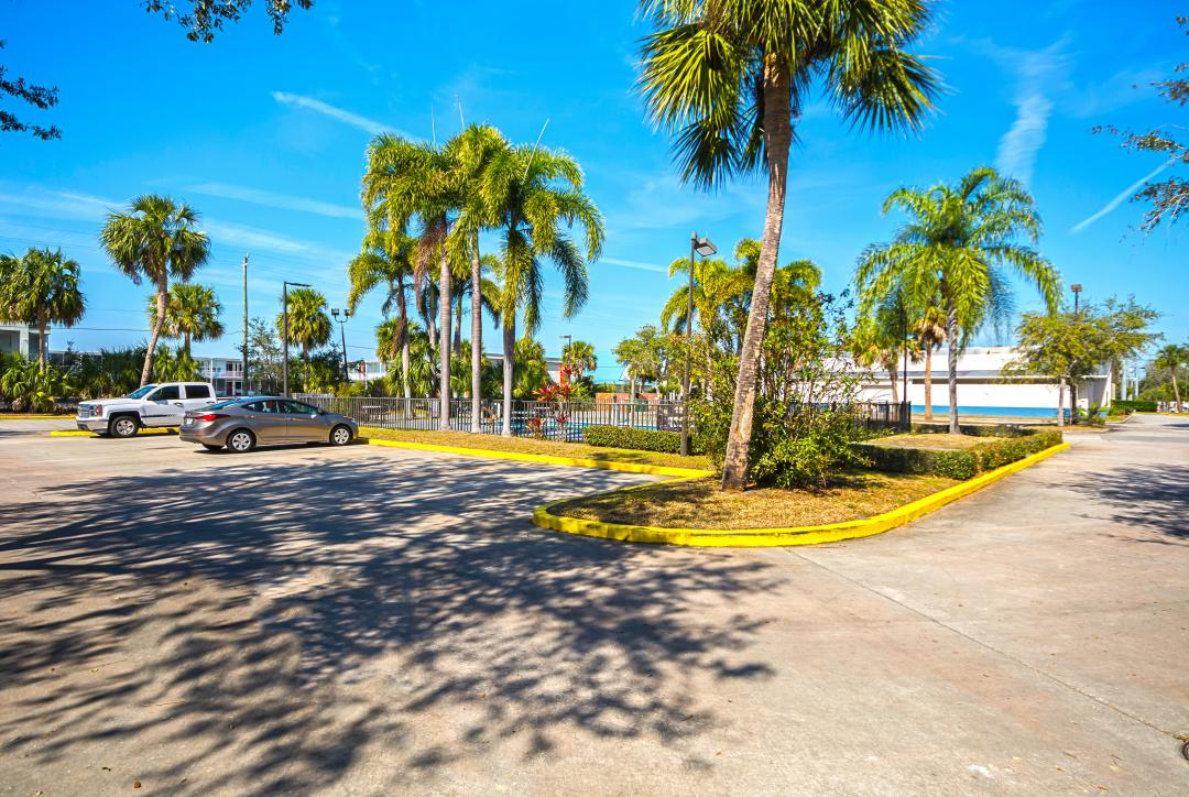 Parking lot of hotel surrounded by tall palm trees