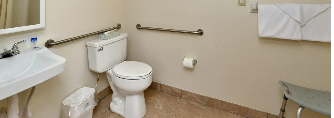 Bathroom with Accessible Facilities