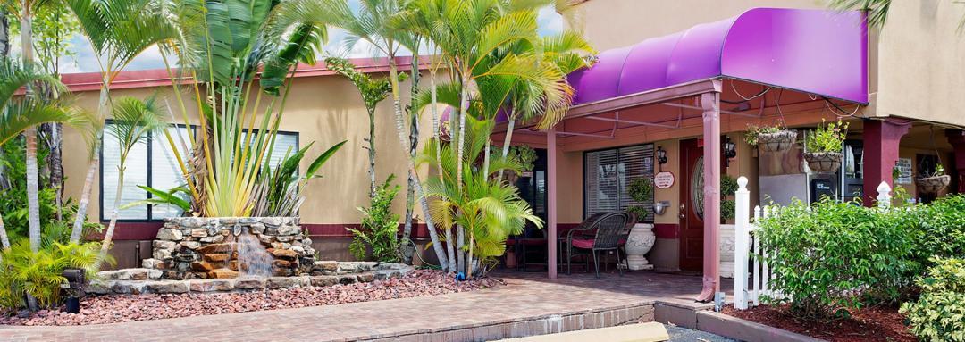 Hotel entrance with garden