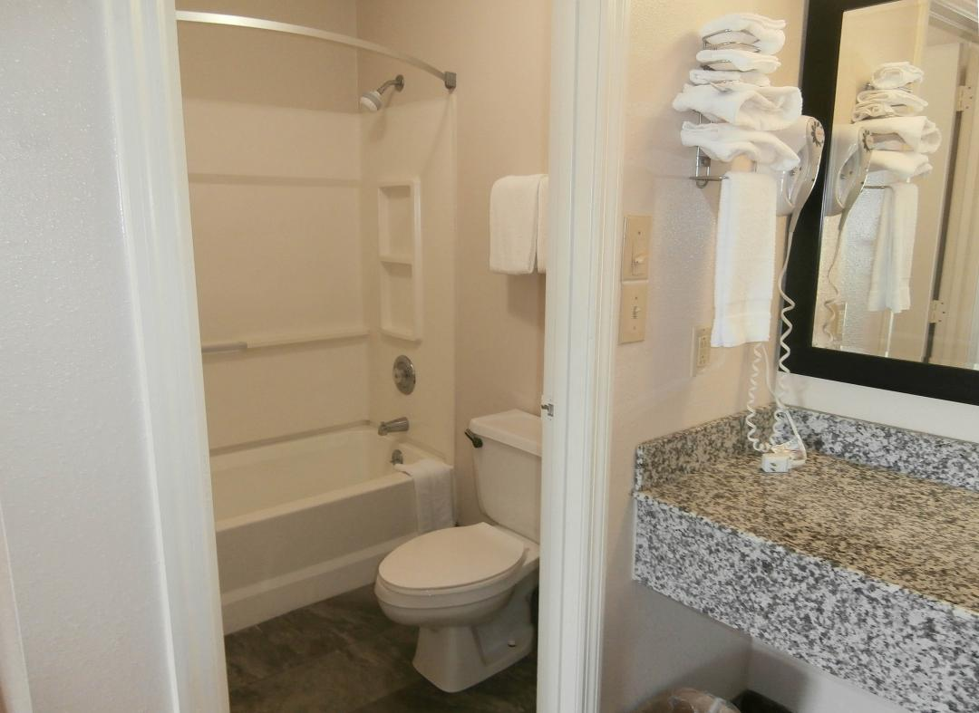 Bath with shower and toilet and seperate vanity