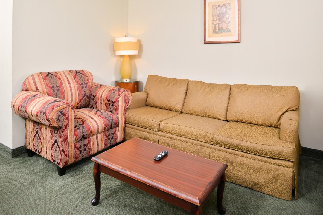 Sofa and sitting area of Deluxe Suite