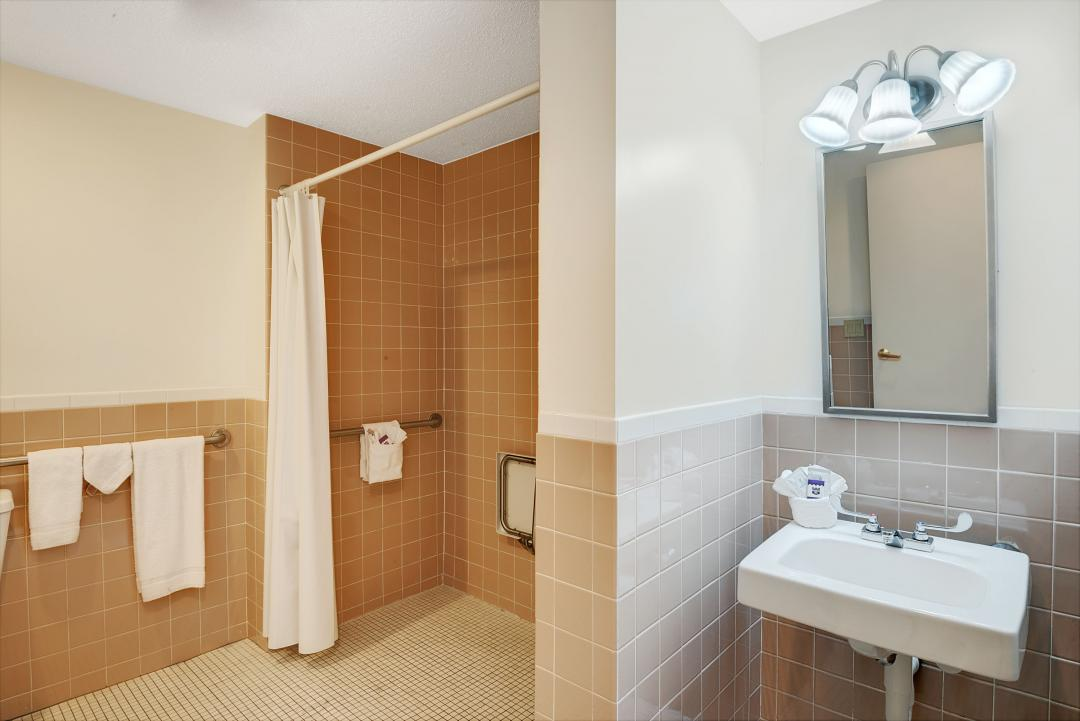 Accessible Guest Bath with Roll-in Shower and Grab Bars
