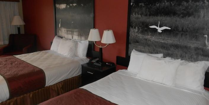 Guest room with double and queen bed including artwork