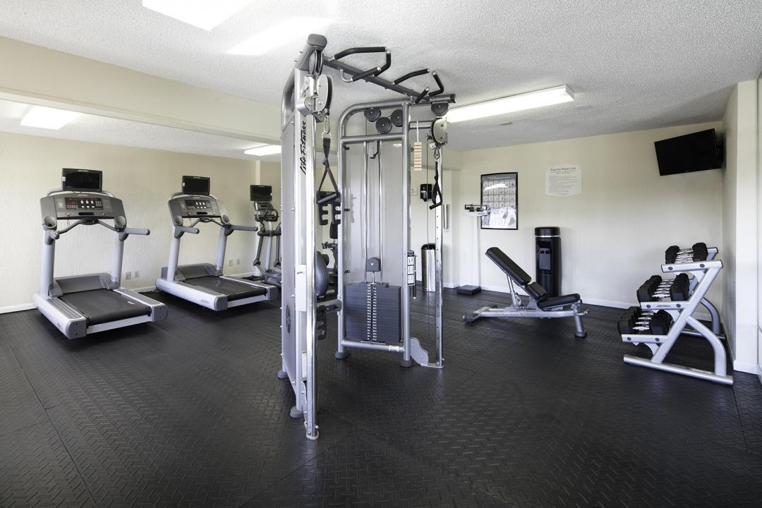 Fitness Room with Free Weights, Bench Seat, Elyptical Machine, and Tread Mills