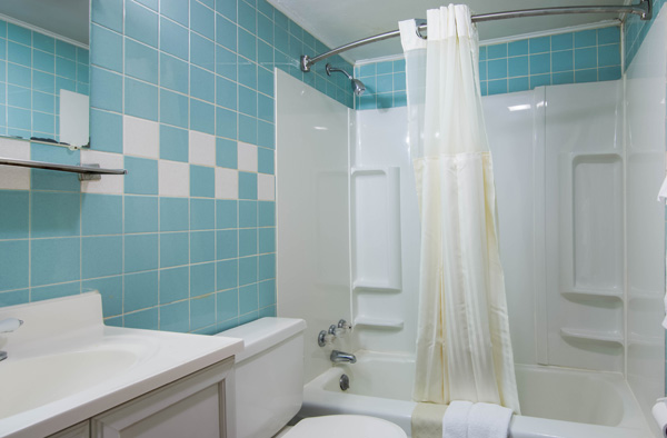 Suite Bathroom and Shower