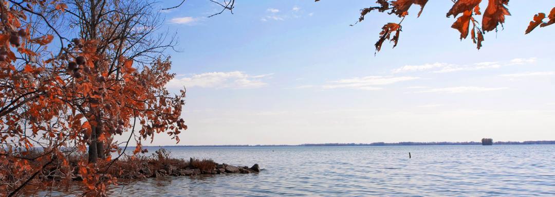 Nature View of Lake