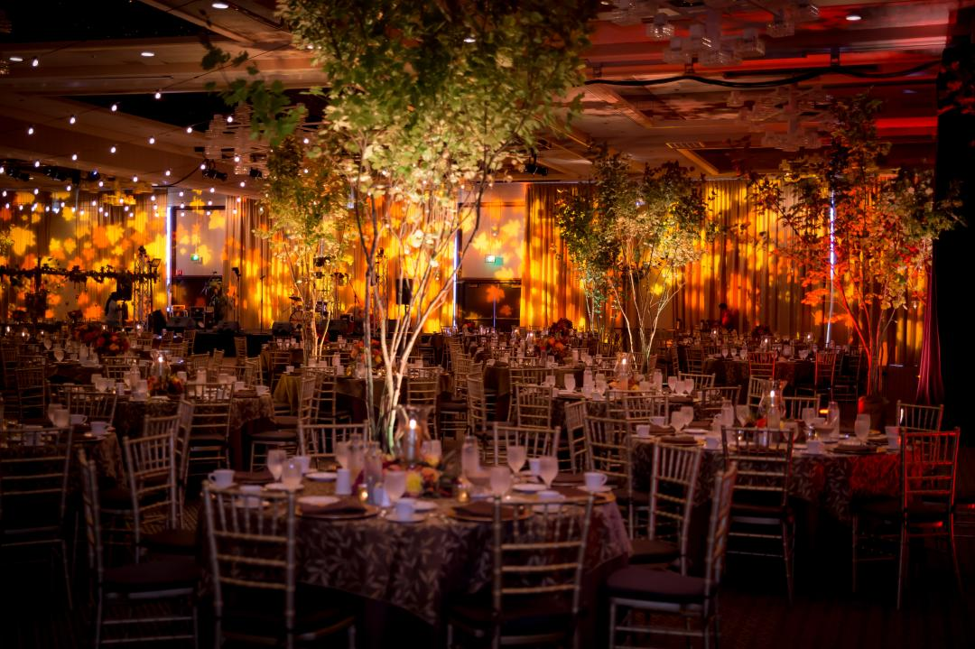 Elegantly setup of indoor banquet with lights and decorated tables