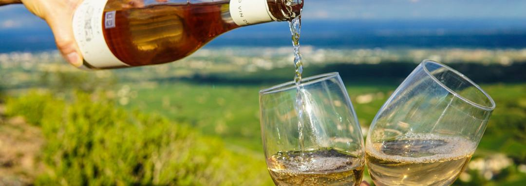 Taste The Best Of Oregon Wine Country