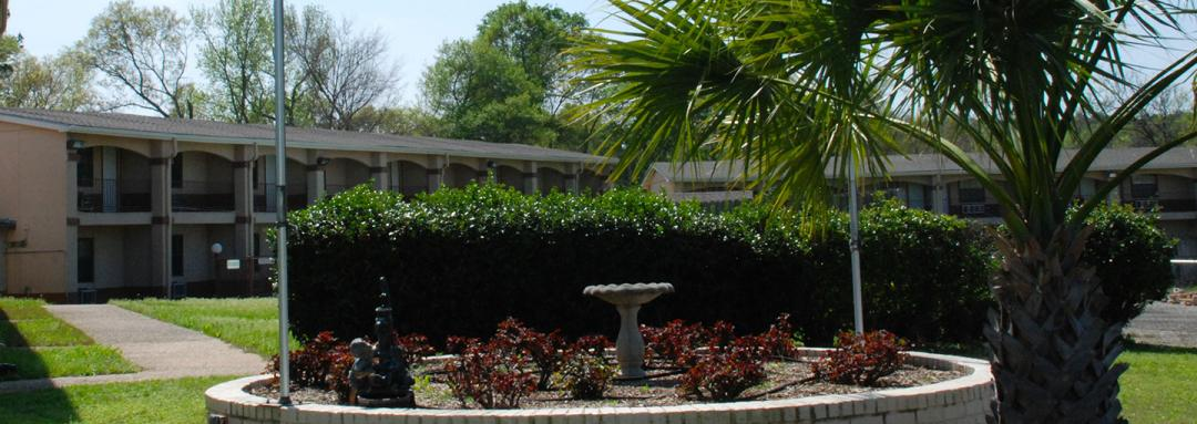 Hotel garden area and courtyard