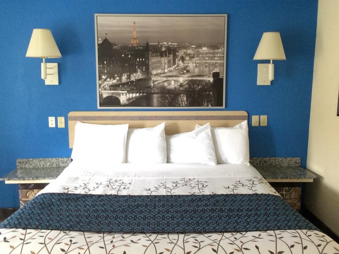 Guest room with king bed and artwork on the wall