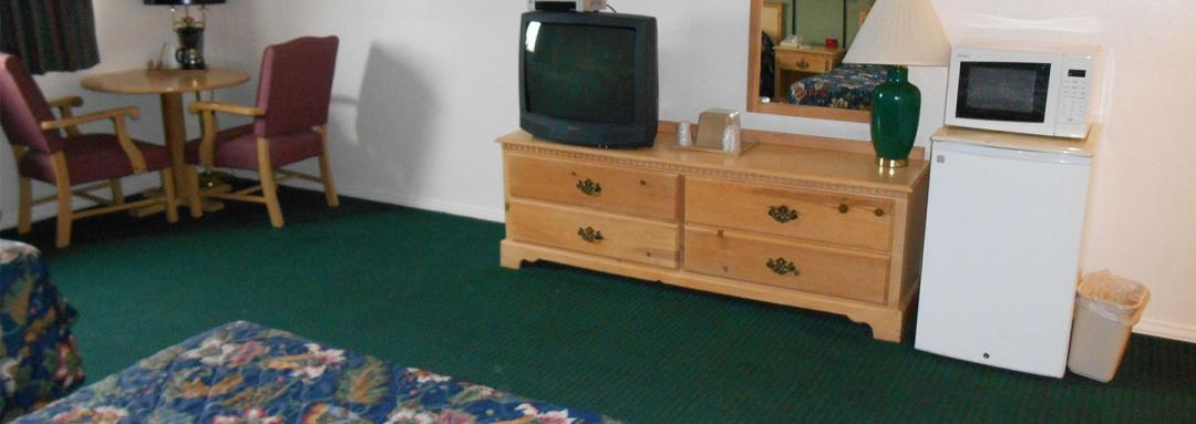 Guest Room with Amenities Including TV, Microwave, and Fridge