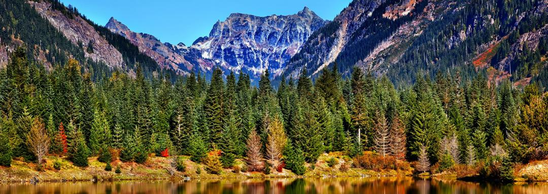 Nature View of Lake and Mountains